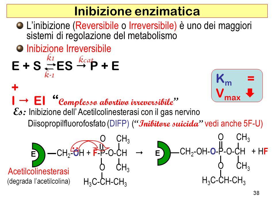 Inibizione enzimatica