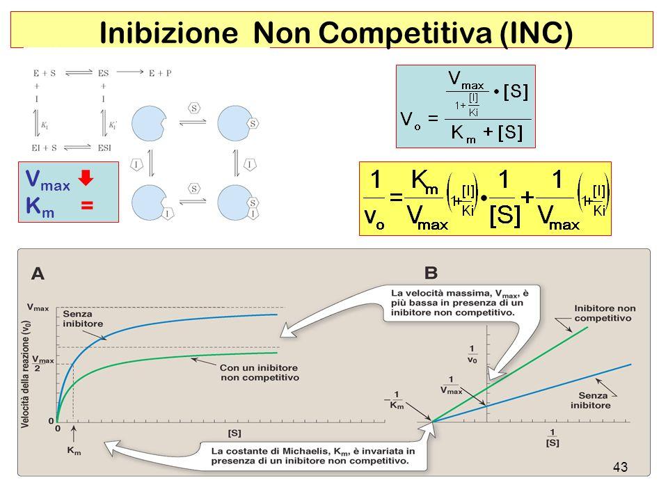 Inibizione Non Competitiva (INC)