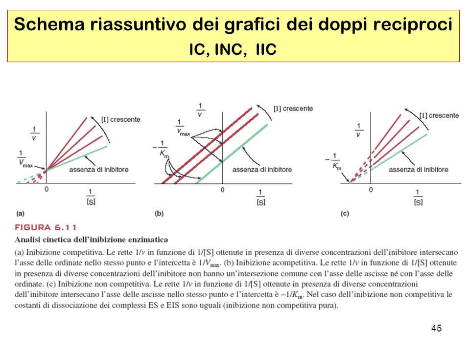 Schema riassuntivo dei grafici dei doppi reciproci IC, INC, IIC