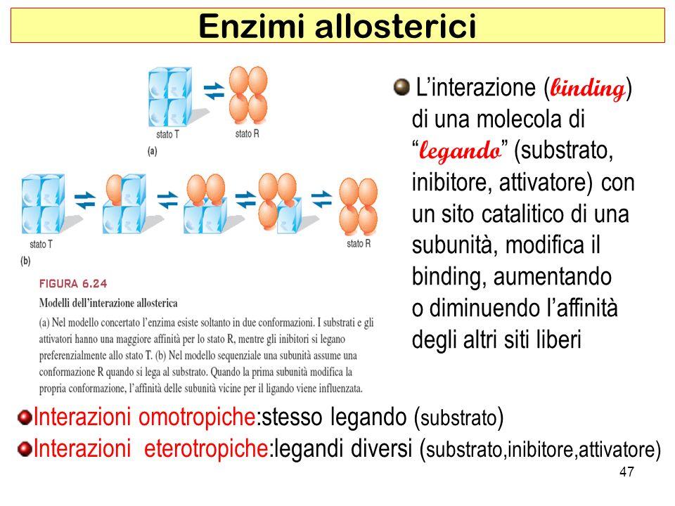 Enzimi allosterici