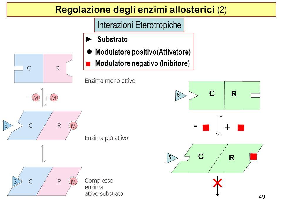  -  +   ● Modulatore positivo(Attivatore)
