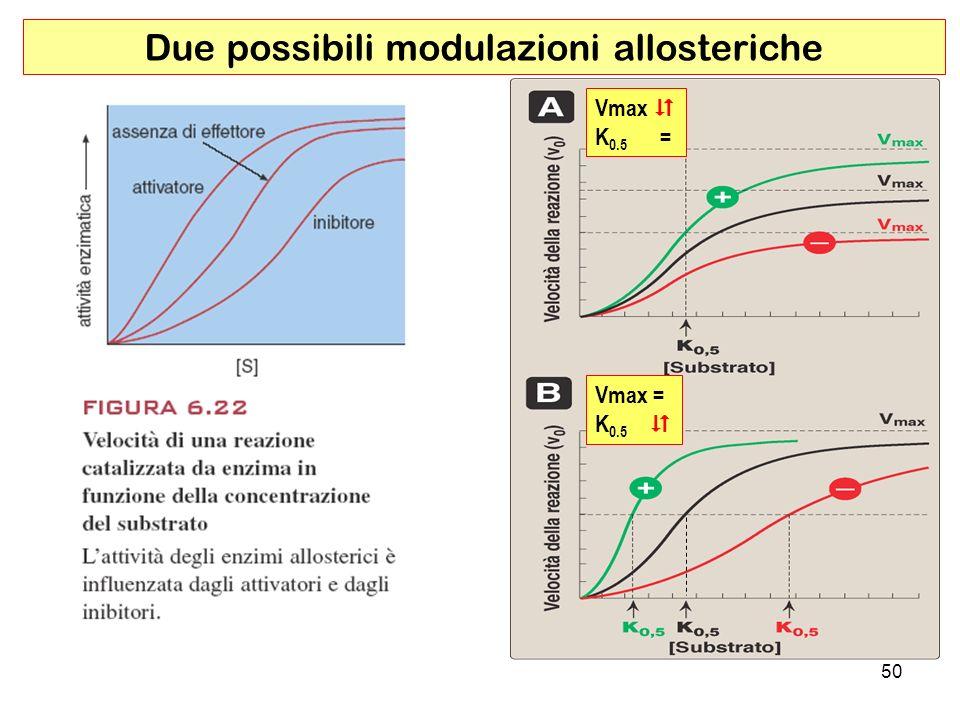 Due possibili modulazioni allosteriche