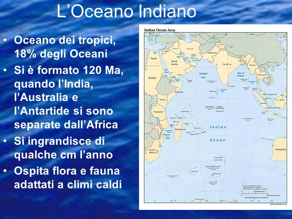 L'Oceano Indiano Oceano dei tropici, 18% degli Oceani