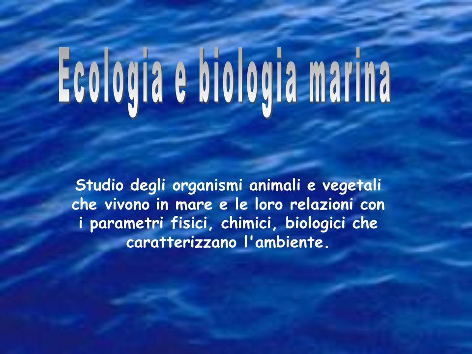 Ecologia e biologia marina