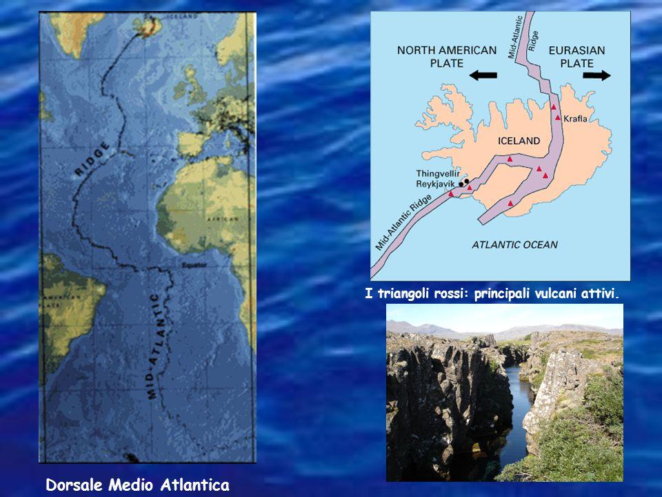 Dorsale Medio Atlantica