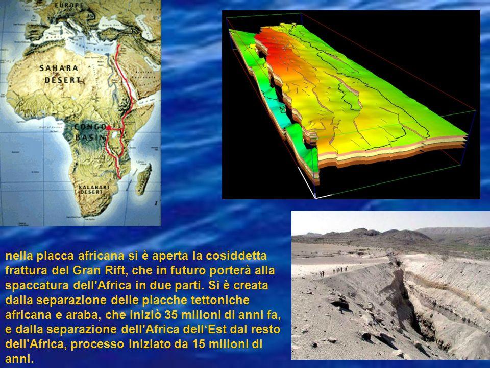 nella placca africana si è aperta la cosiddetta frattura del Gran Rift, che in futuro porterà alla spaccatura dell Africa in due parti.