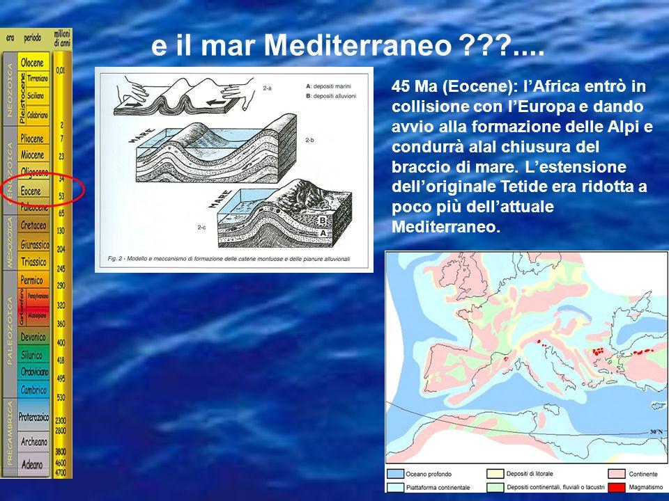 e il mar Mediterraneo ....