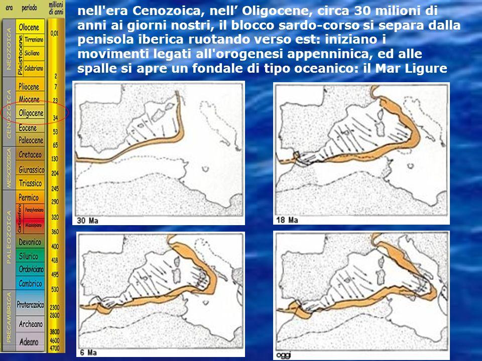 nell era Cenozoica, nell' Oligocene, circa 30 milioni di anni ai giorni nostri, il blocco sardo-corso si separa dalla penisola iberica ruotando verso est: iniziano i movimenti legati all orogenesi appenninica, ed alle spalle si apre un fondale di tipo oceanico: il Mar Ligure