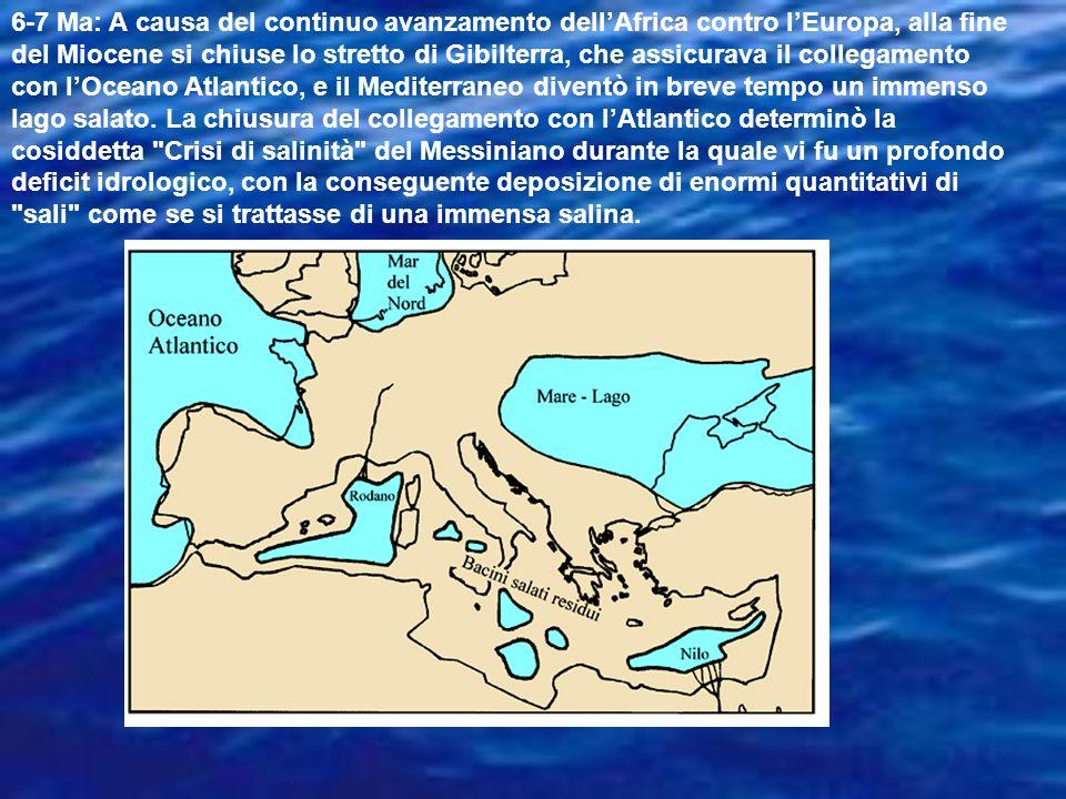 6-7 Ma: A causa del continuo avanzamento dell'Africa contro l'Europa, alla fine del Miocene si chiuse lo stretto di Gibilterra, che assicurava il collegamento con l'Oceano Atlantico, e il Mediterraneo diventò in breve tempo un immenso lago salato.