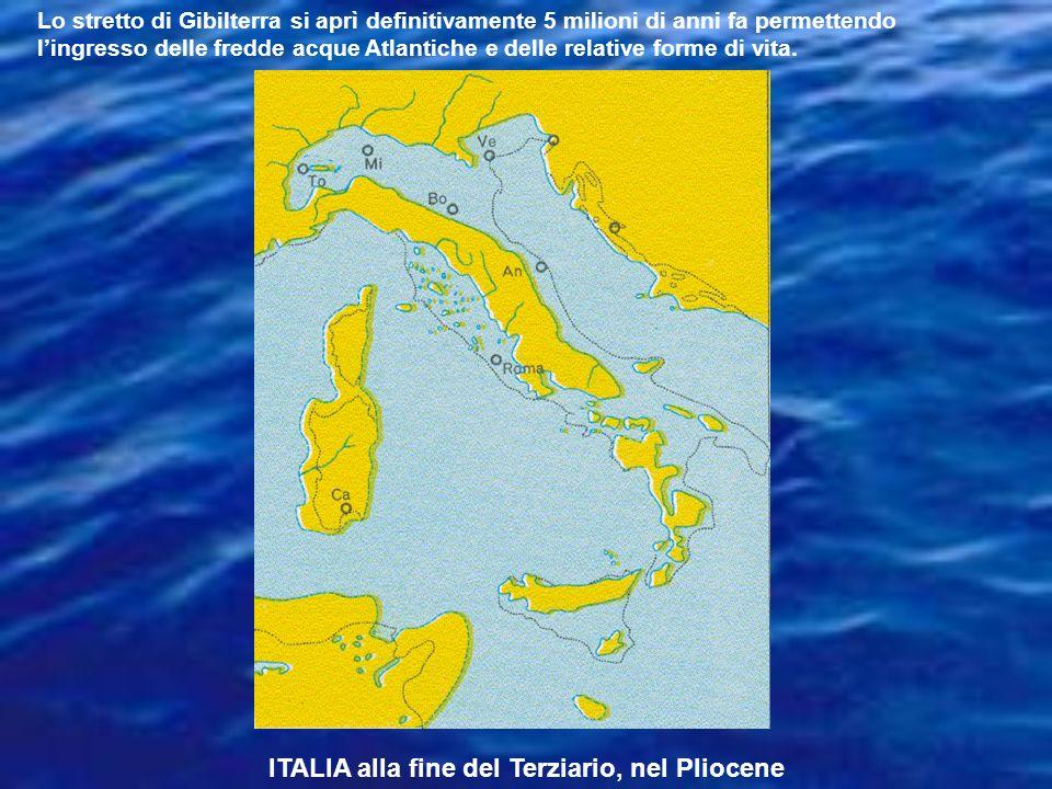 ITALIA alla fine del Terziario, nel Pliocene