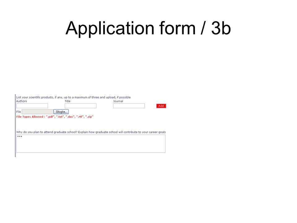 Application form / 3b