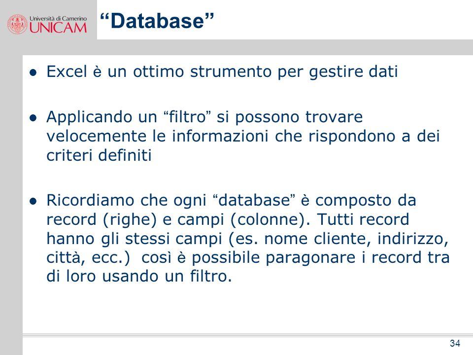 Database Excel è un ottimo strumento per gestire dati