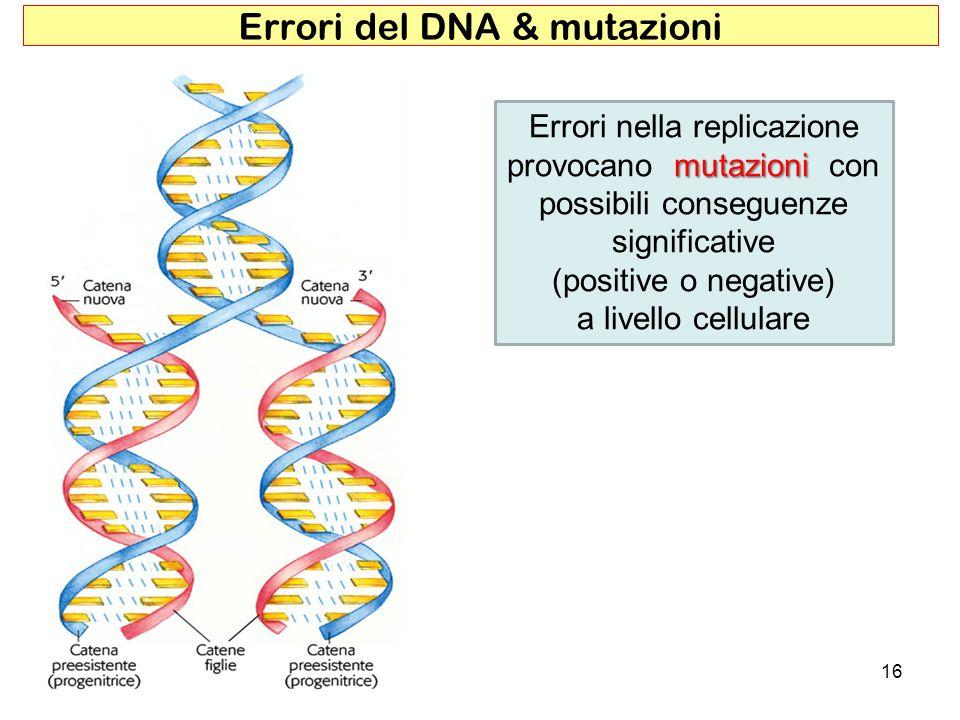 Errori del DNA & mutazioni
