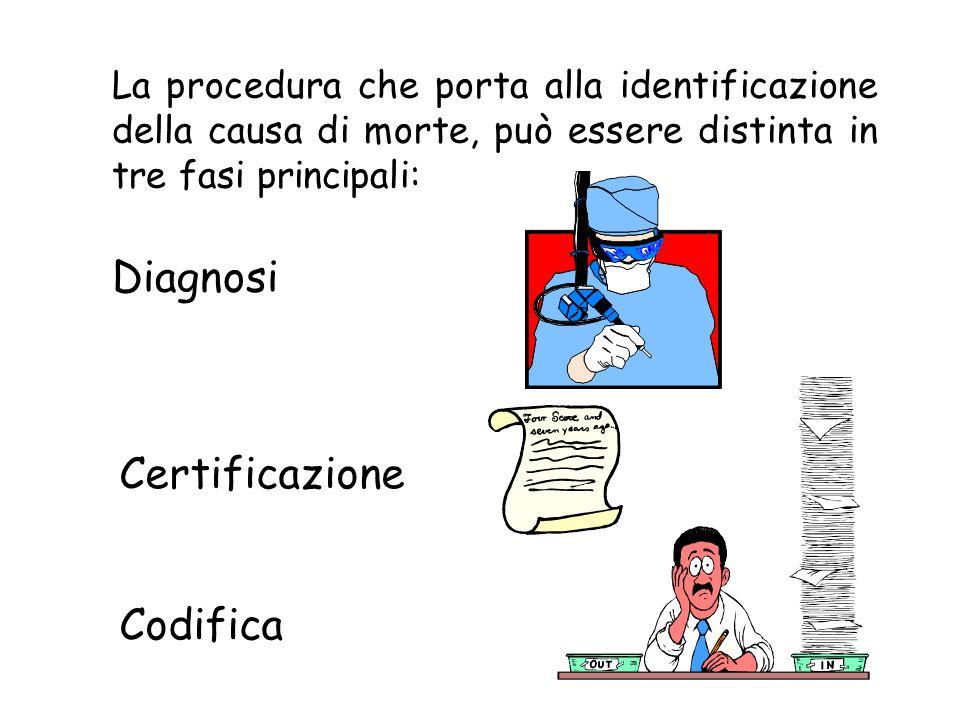 Diagnosi Certificazione Codifica