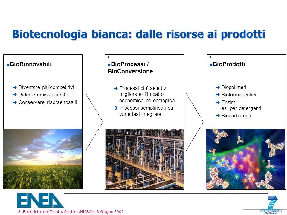 Biotecnologia bianca: dalle risorse ai prodotti