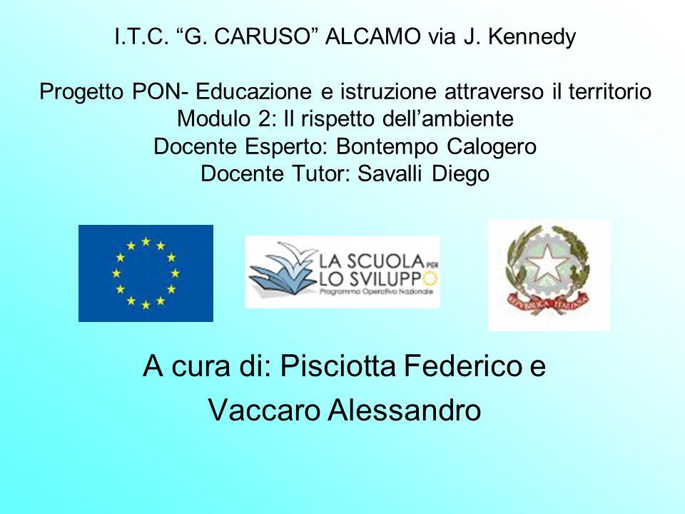 A cura di: Pisciotta Federico e Vaccaro Alessandro