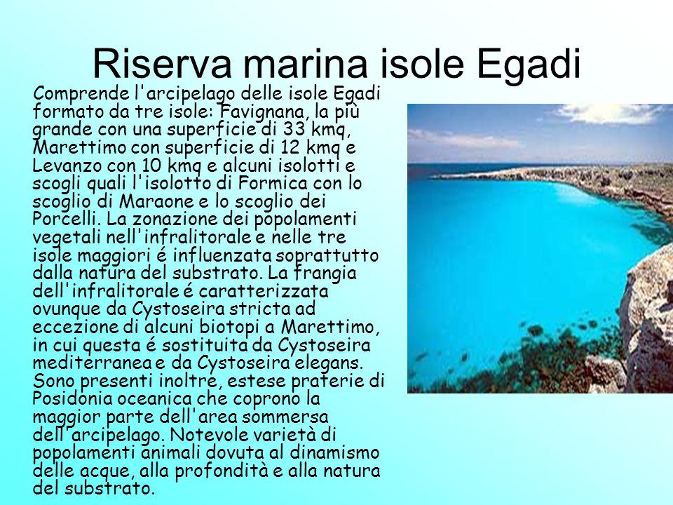 Riserva marina isole Egadi