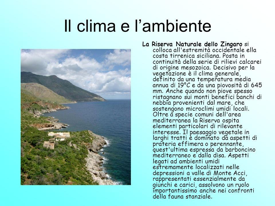 Il clima e l'ambiente