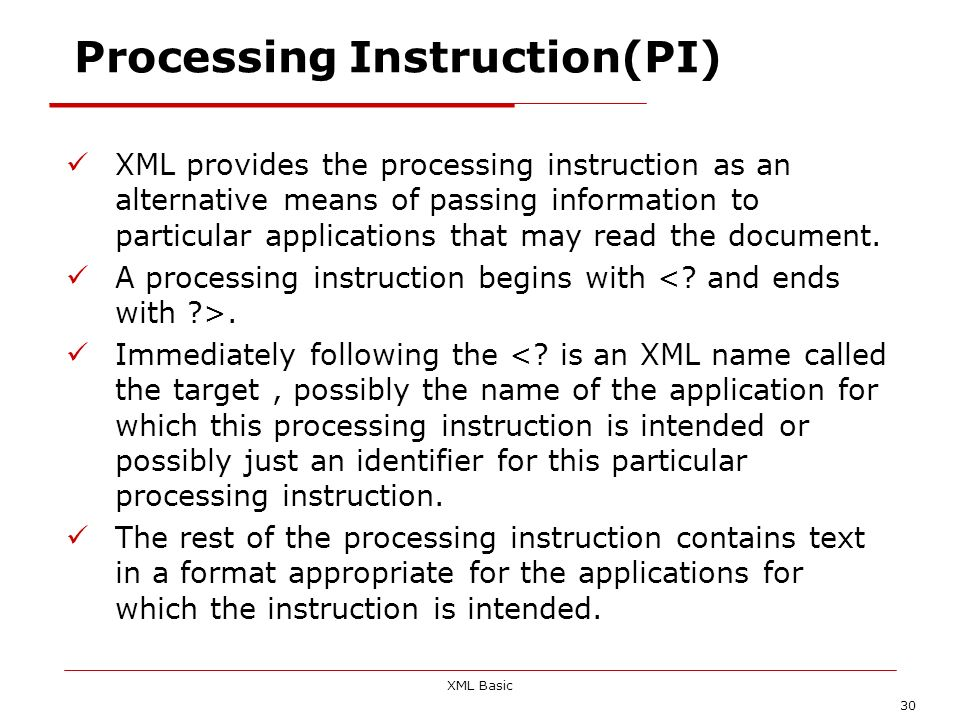 Processing Instruction(PI)