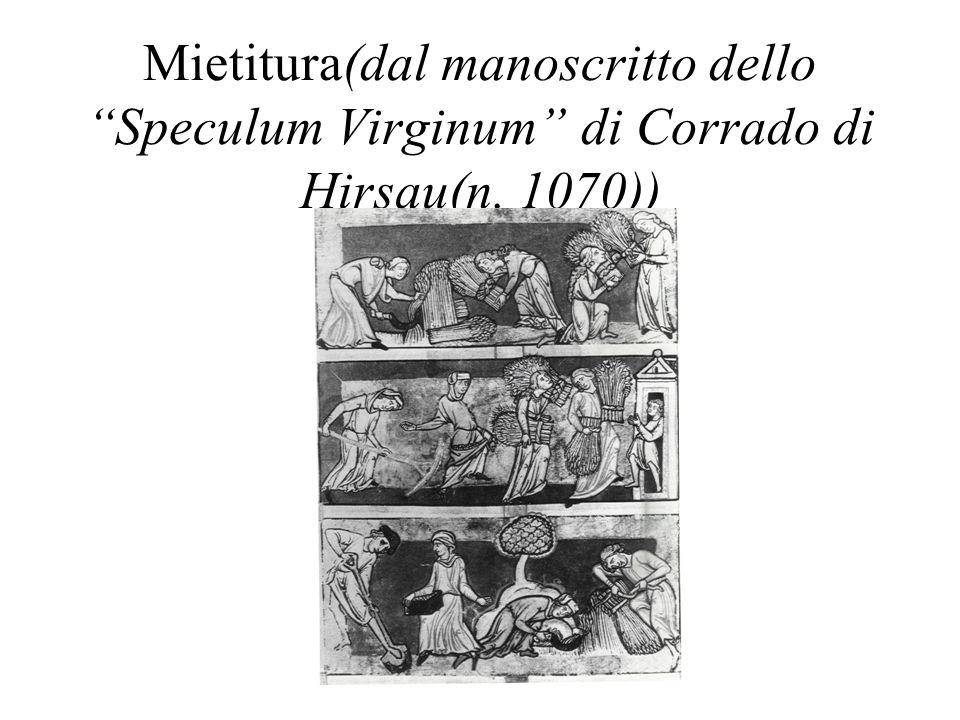 Mietitura(dal manoscritto dello Speculum Virginum di Corrado di Hirsau(n. 1070))