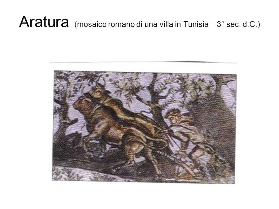Aratura (mosaico romano di una villa in Tunisia – 3° sec. d.C.)