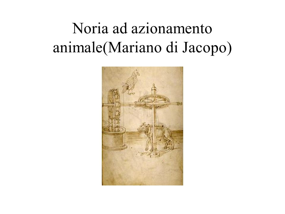 Noria ad azionamento animale(Mariano di Jacopo)