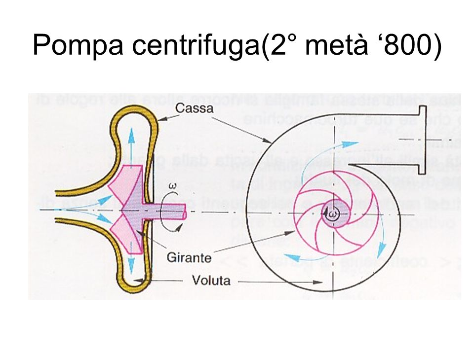 Pompa centrifuga(2° metà '800)