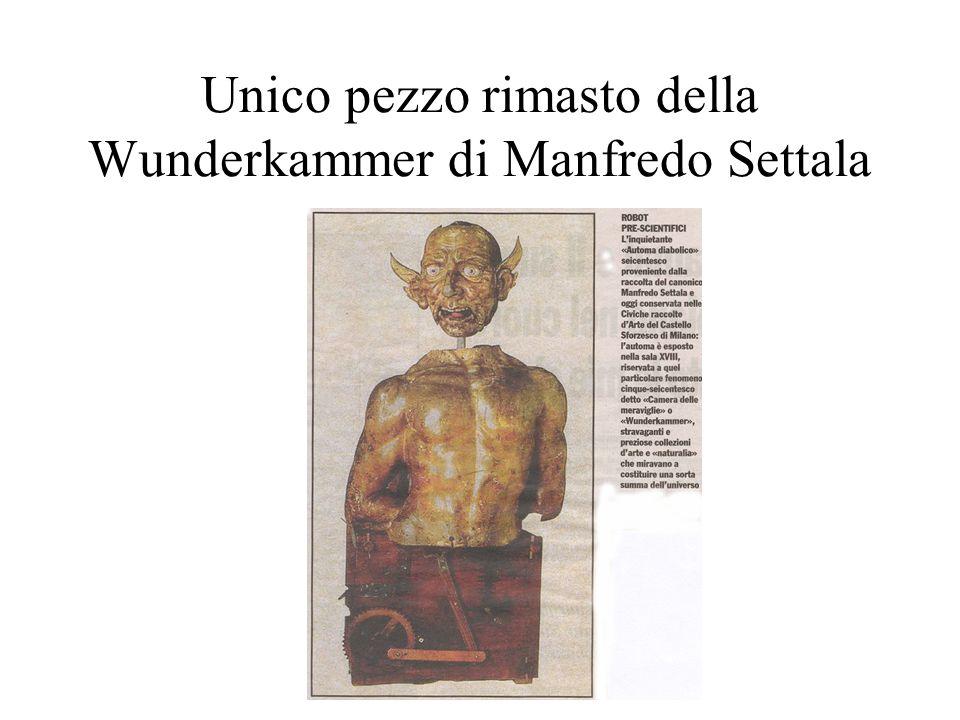 Unico pezzo rimasto della Wunderkammer di Manfredo Settala