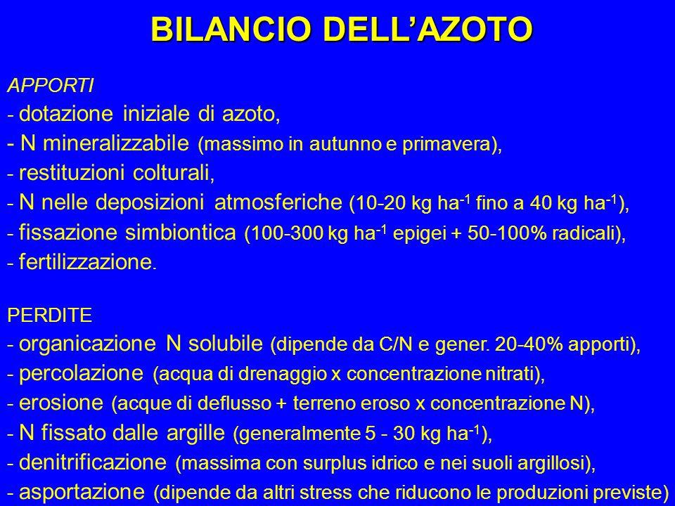 BILANCIO DELL'AZOTO APPORTI. - dotazione iniziale di azoto, - N mineralizzabile (massimo in autunno e primavera),