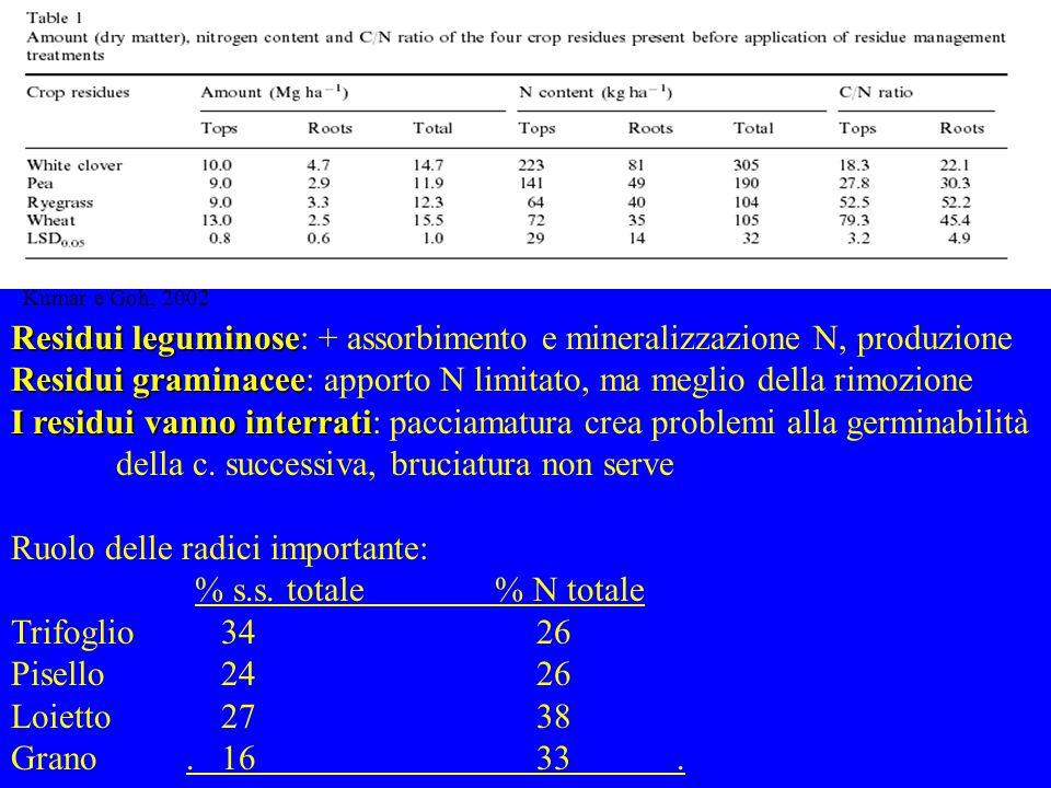 Residui leguminose: + assorbimento e mineralizzazione N, produzione