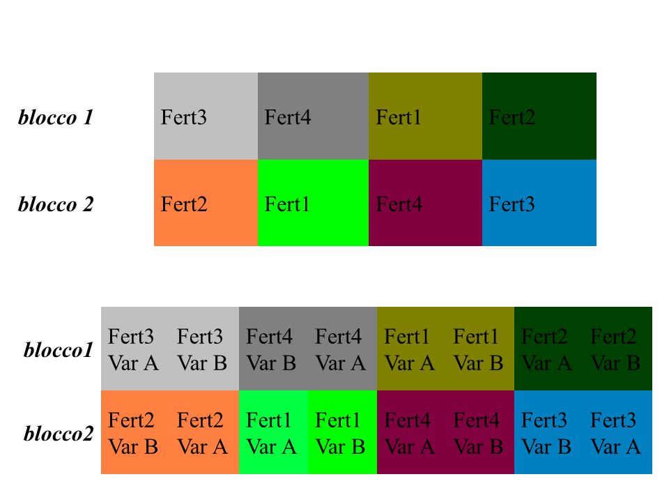 blocco 1Fert3. Fert4. Fert1. Fert2. blocco 2. blocco1. Fert3 Var A. Fert3 Var B. Fert4 Var B. Fert4 Var A.