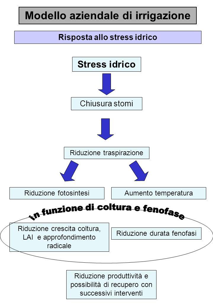 Modello aziendale di irrigazione Risposta allo stress idrico
