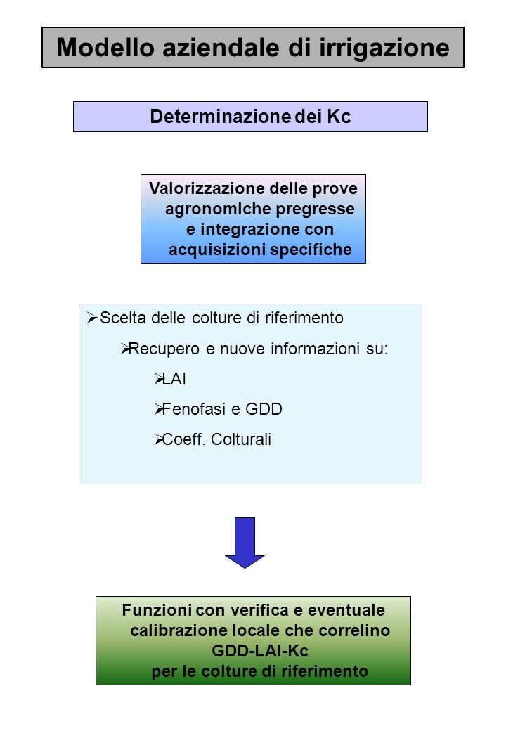 Modello aziendale di irrigazione