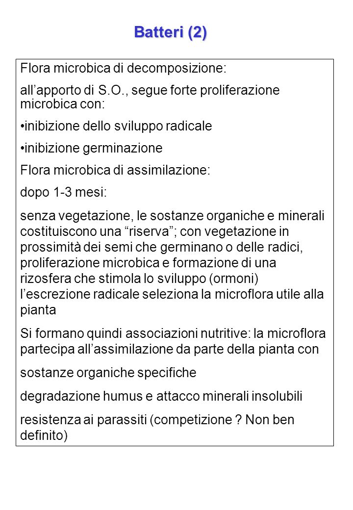 Batteri (2) Flora microbica di decomposizione: