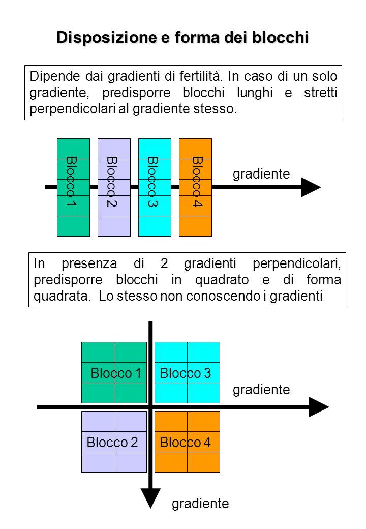 Disposizione e forma dei blocchi