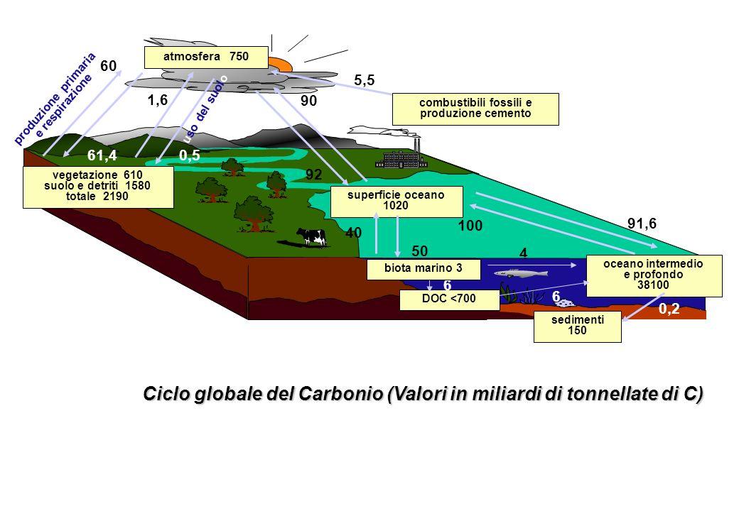 combustibili fossili e produzione cemento