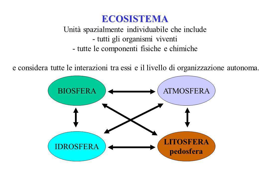 ECOSISTEMA Unità spazialmente individuabile che include