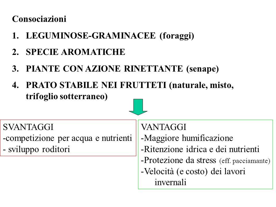 Consociazioni LEGUMINOSE-GRAMINACEE (foraggi) SPECIE AROMATICHE. PIANTE CON AZIONE RINETTANTE (senape)