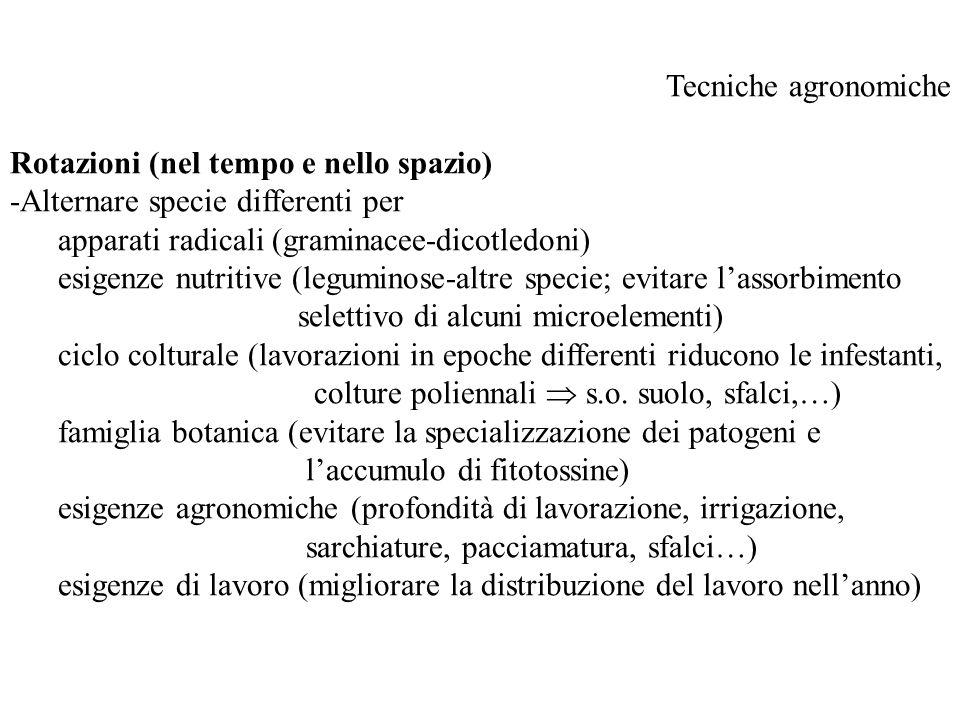 Tecniche agronomiche Rotazioni (nel tempo e nello spazio) -Alternare specie differenti per. apparati radicali (graminacee-dicotledoni)