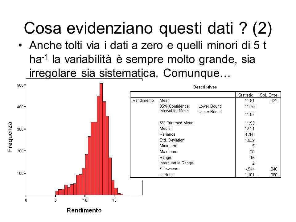 Cosa evidenziano questi dati (2)