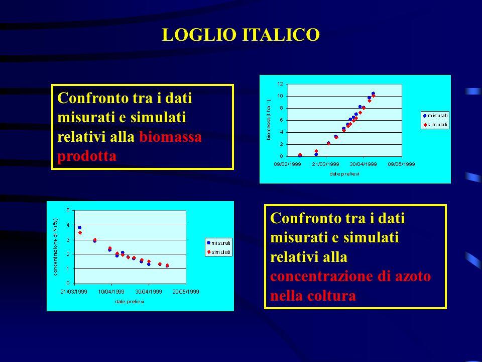 LOGLIO ITALICO Confronto tra i dati misurati e simulati relativi alla biomassa prodotta.