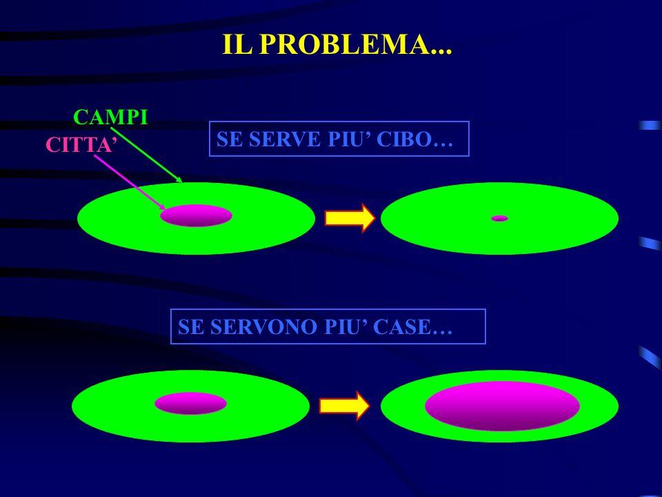 IL PROBLEMA... CAMPI SE SERVE PIU' CIBO… CITTA' SE SERVONO PIU' CASE…