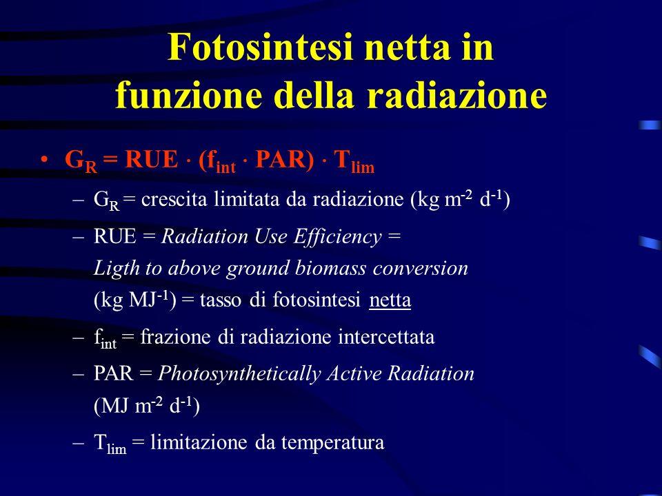 Fotosintesi netta in funzione della radiazione