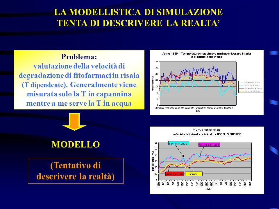 LA MODELLISTICA DI SIMULAZIONE TENTA DI DESCRIVERE LA REALTA'