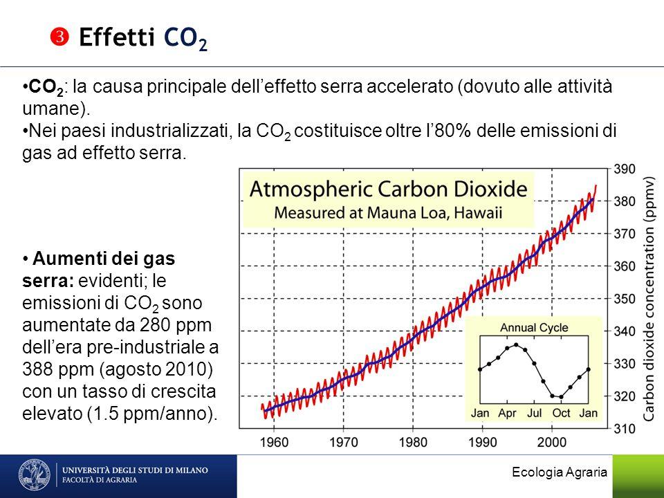  Effetti CO2 CO2: la causa principale dell'effetto serra accelerato (dovuto alle attività umane).