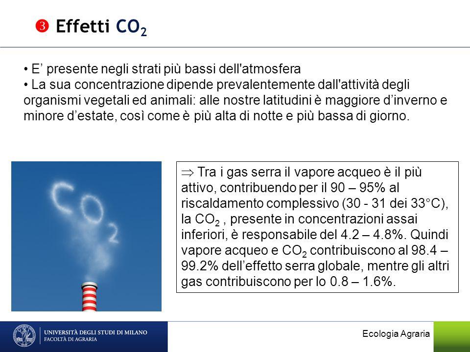  Effetti CO2 E' presente negli strati più bassi dell atmosfera