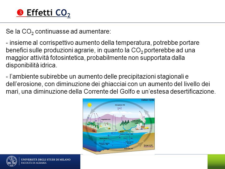  Effetti CO2 Se la CO2 continuasse ad aumentare:
