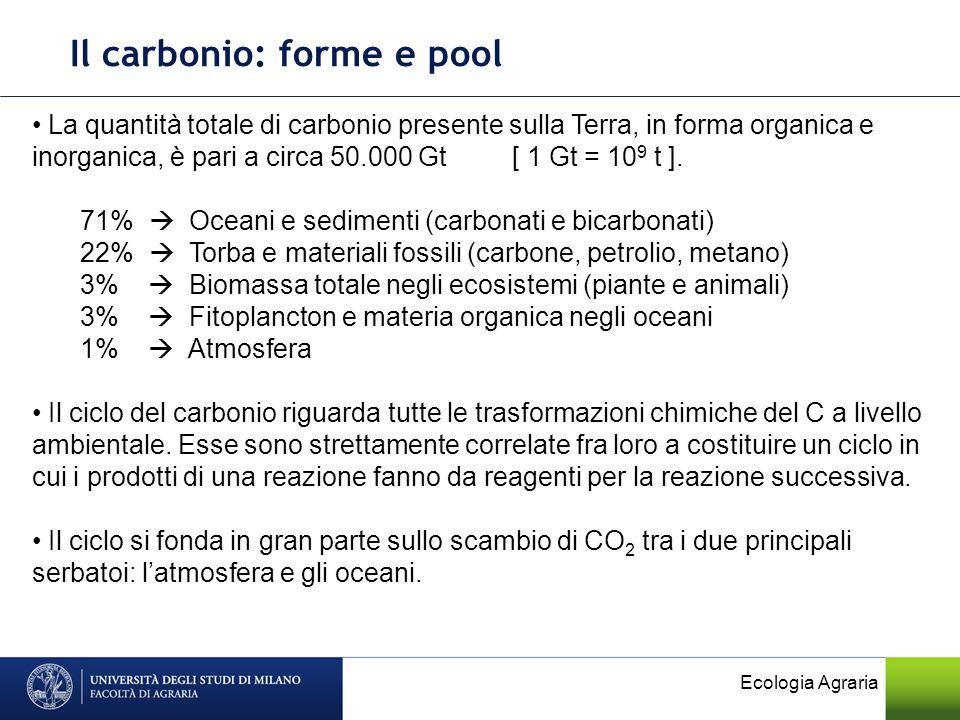 Il carbonio: forme e pool