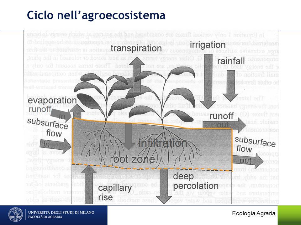 Ciclo nell'agroecosistema