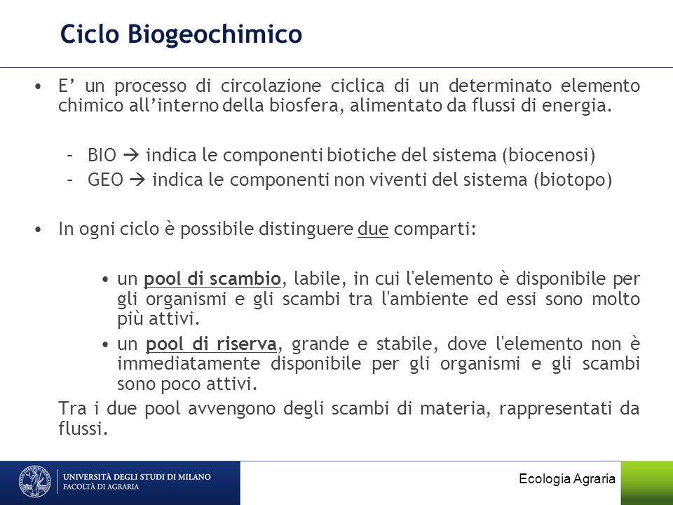 Ciclo Biogeochimico